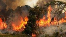 مصلحة الأبحاث تحذر من الحرائق: موجة حرّ قويّة تضرب لبنان بدءاً من يوم السبت ومن المتوقّع أن تتجاوز درجات الحرارة الـ 40 درجة