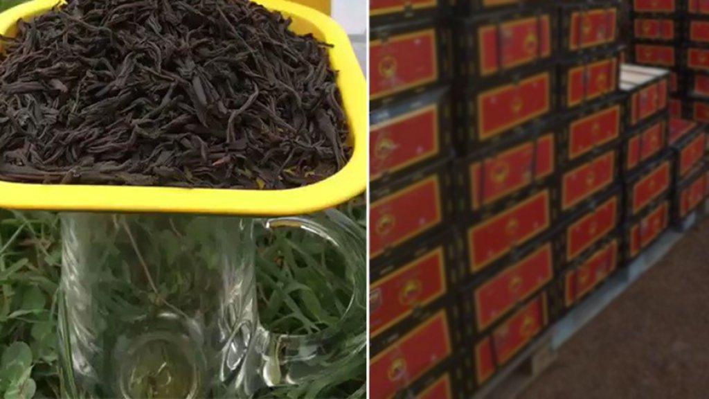بعد رحلة البحث عن السمك الموريتاني، لبنانيون يتساءلون أين الشاي السيلاني؟