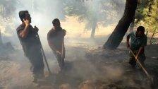 إخماد حريق في خراج عكار العتيقة واحتراق ما يزيد عن 250 شجرة صنوبر