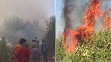 حريق في رحبة أتى على مساحة 20000 متر مربع من أشجار الصنوبر والسنديان...ومطالبة بالتدخل السريع والسيطرة عليه