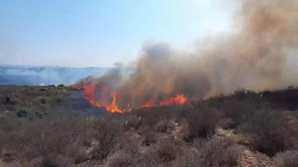 النيران التهمت مساحات حرجية واسعة في وادي الحجير