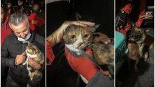 علقت 30 ساعة تحت الأنقاض..كلب ينقذ قطة حوصرت بعد زلزال إزمير!