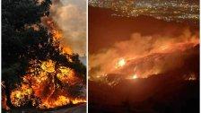 جحيم في الجزائر...قتيلان ومصابون في حرائق واسعة وعمليات الإطفاء صعبة!