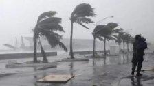 الأبحاث الزراعية تحذر من احتمال هطول أمطار غزيرة وهبوب رياح قوية مساءً