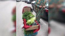 صورة موجعة.. لبنانية تبيع الخضار على عربة في طرابلس واضعة لافتة أن هدفها جني المال لشراء أدوية لأهلها المرضى!
