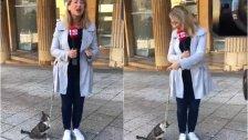 بالفيديو/ متطفّل لطيف على الهواء مباشرة من بيروت.. قطة تدخّلت أثناء حديث مراسلة سكاي نيوز عربية