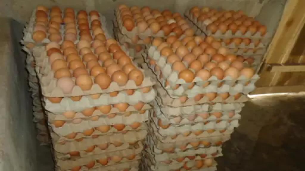 عناصر الجيش دهمت محلاً لبيع البيض في طرابلس وفرضت طوقاً أمنياً في المكان مانعة الناس من الاقتراب وصادرت خلال المداهمة بارودة وجعبة