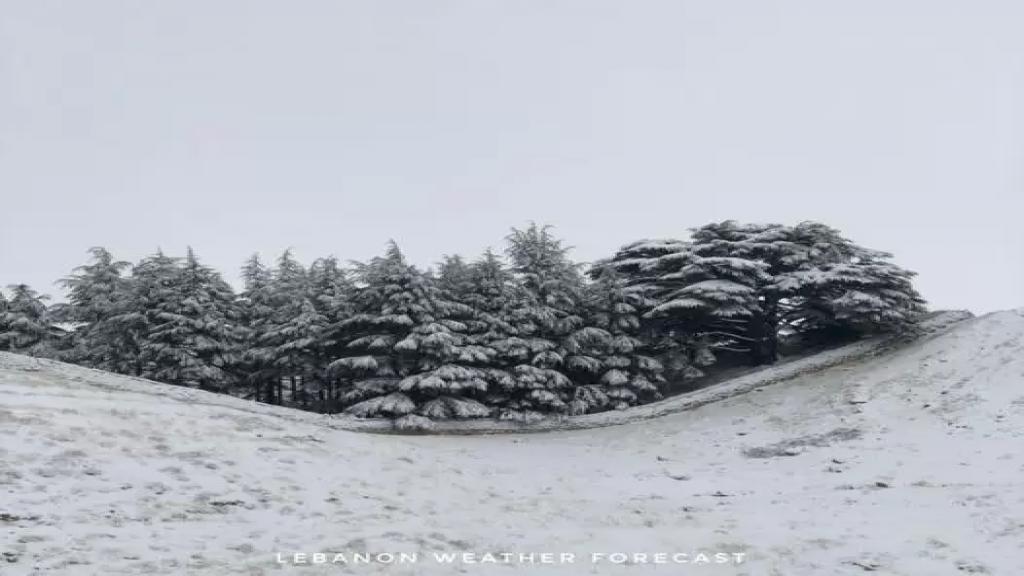 هدنة جوية لـ 24 ساعة سيشهدها لبنان... طقس نهاية الاسبوع عاصف والثلوج تلامس الـ 1400 متر!
