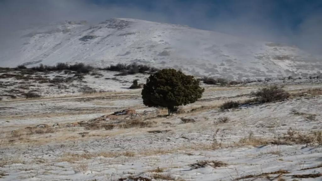 الثلوج غطت المرتفعات الجبلية في محافظة عكار