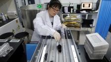 يأملون في تطبيقه على البشر.. علماء صينيون يطورون علاجاً يمكنه تأخير الشيخوخة عند الفئران