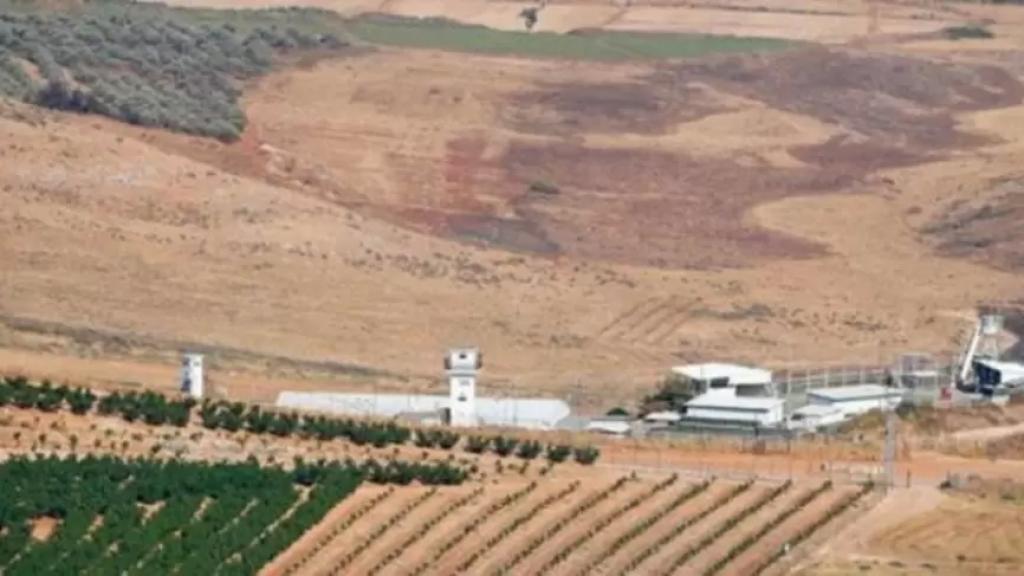 20 عنصر من قوات الاحتلال تجاوزوا السياج التقني في كروم الشراقي - ميس الجبل