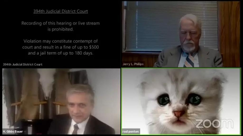 """بالفيديو/ """"أنا لست قطة""""..محام يتعرض لموقف محرج بسبب """"فلتر"""" خلال محاكمة عن بعد على تطبيق """"زووم"""""""
