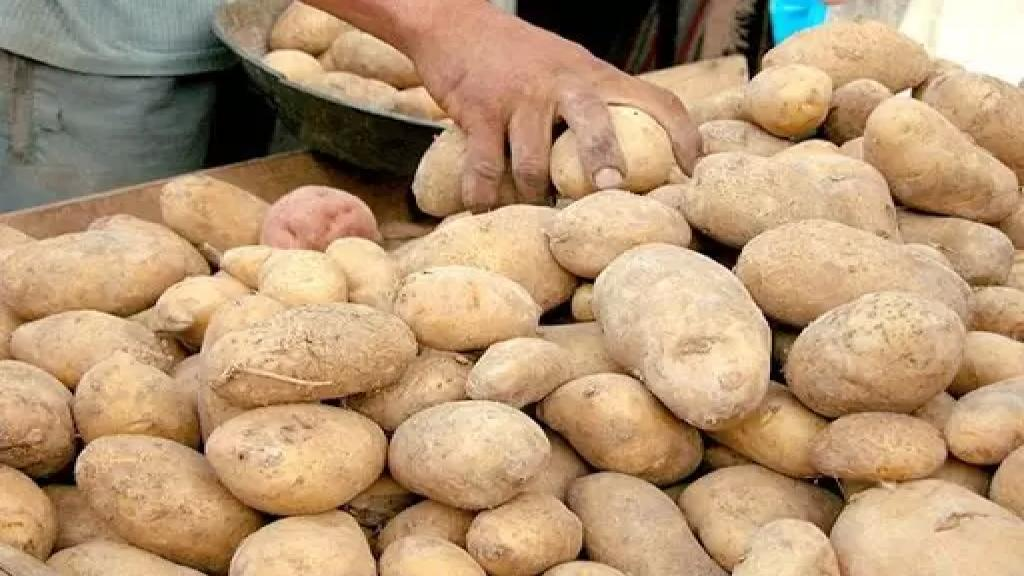 يوميات الفقراء: زيت مكرّر في الأسواق وبطاطا مغشوشة