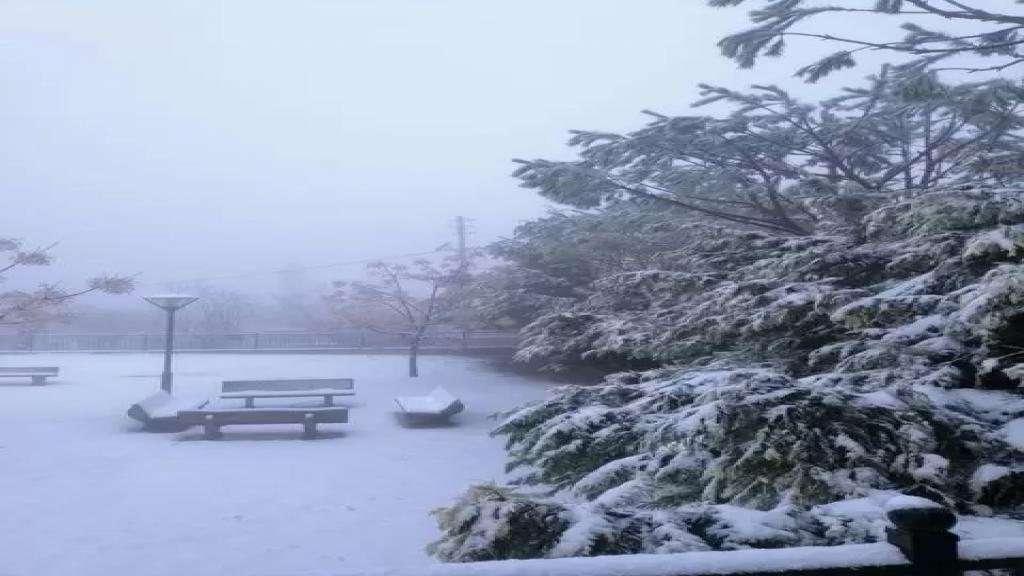 بالصور / الثلوج في الريحان - جنوب لبنان...