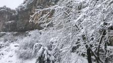 بالصور/ الثلج الابيض يكلل كفرذبيان!