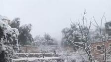 بالفيديو/ الزائر الأبيض يحط رحاله في كفرشوبا- جنوب لبنان