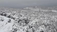 مشمش الجبيلية تناشد إصلاح التيار المقطوع منذ 5 أيام في ظل ظروف مناخية قاسية ودرجات حرارة متدنية وحاجة الطلاب إلى التعلم عن بعد