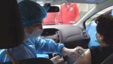 الصليب الأحمر يوضح: ليس لنا أي دور رقابي أو تنظيمي أو عملاني في حملة التلقيح الوطنية