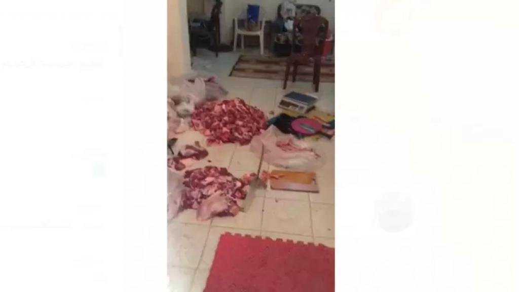 بالفيديو/ لحوم على الأرض في شقّة سكنيّة في منطقة رأس الدكوانة...وتُوزَّع على الأسواق!