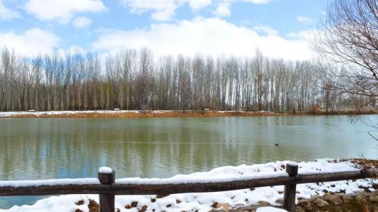 الهدنة الدافئة انتهت.. الطقس غدا ماطر بغزارة والثلوج على ارتفاع 1500 متر