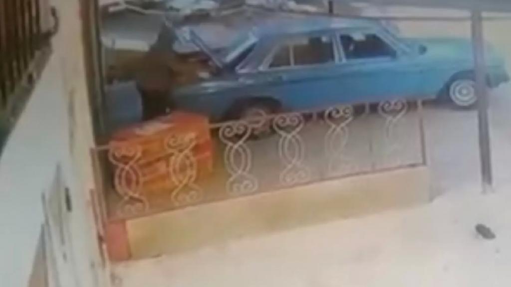 بالفيديو/ لحظة قيام مجهول بسرقة دجاج من أحد المحال في عكار