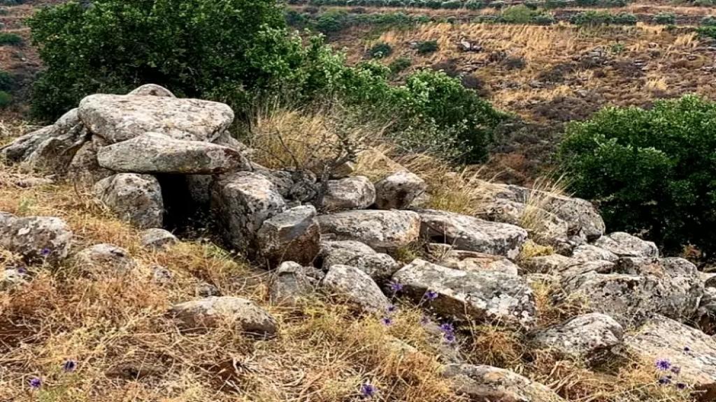 بحجة استصلاح الأرض..جرف أهم القبور الميغاليتية التي ترقى الى أكثر من 4000 سنة قبل الميلاد في عكار!