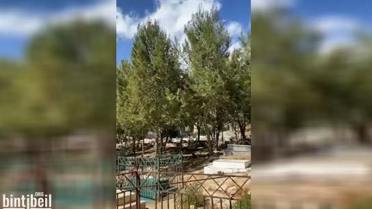 بالفيديو/ جولة في جبانة بنت جبيل القديمة بين الأحبة