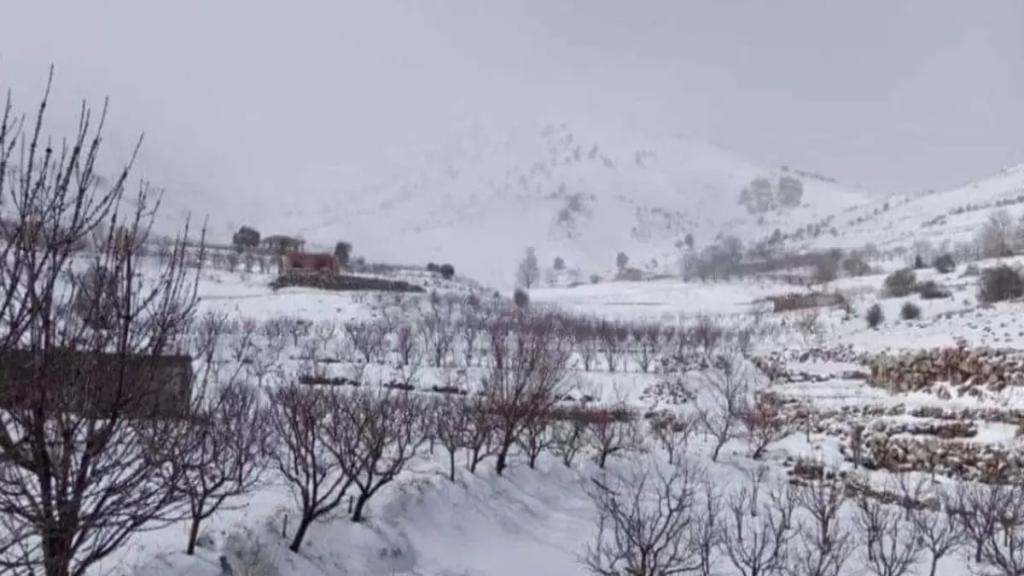 الثلوج غطت مرتفعات الضنية وقطعت الطريق مع الهرمل