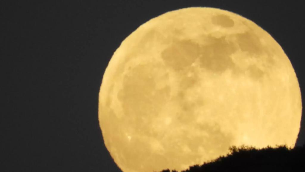 """""""قمر الدودة""""..أول قمر عملاق لهذا العام يزيّن سماء الليل"""