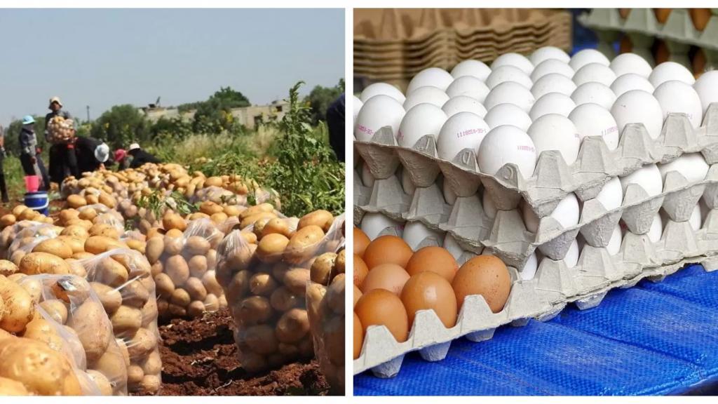 في بعلبك...حملة مقاطعة البيض نجحت حيث انخفض سعر الكرتونة إلى 25 ألف والعين على البطاطا!
