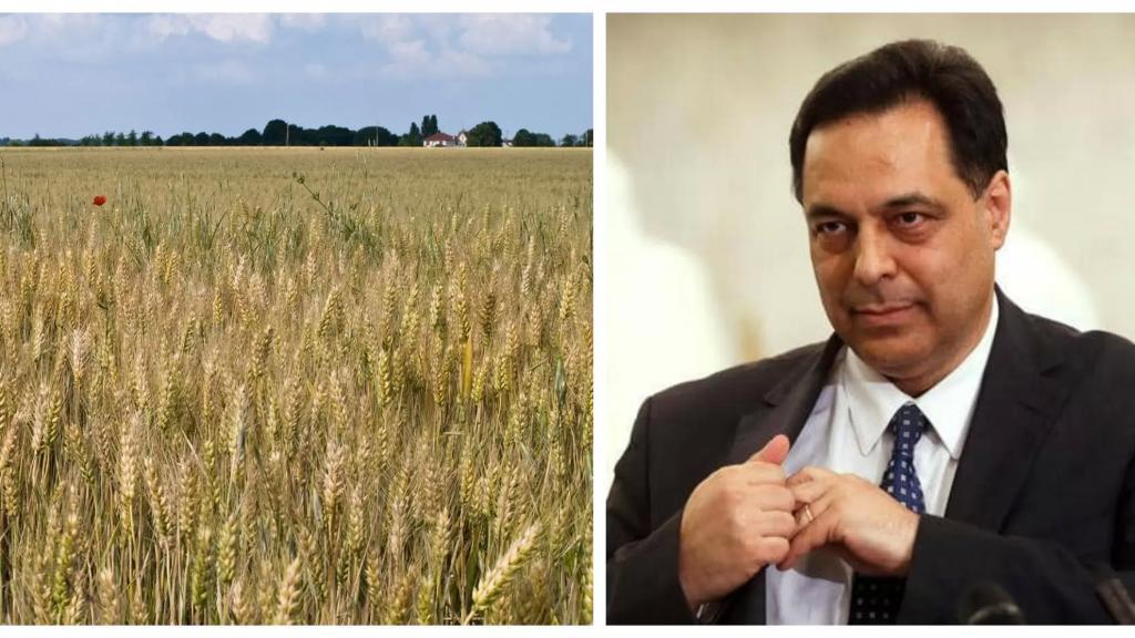 دياب كلف هيئة الاغاثة شراء مبيدات لمكافحة حشرة على القمح