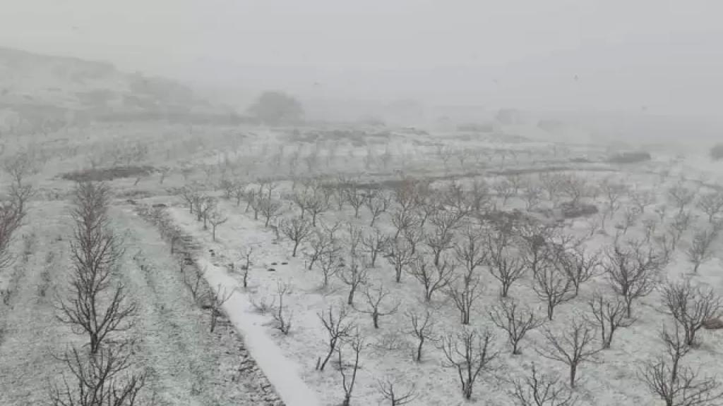 الثلوج تغطي مرتفعات الضنية وتقطع الطرق الجبلية