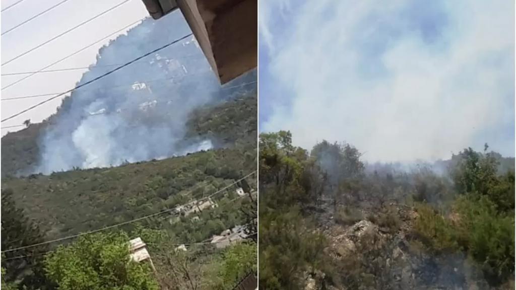 بالفيديو/ اندلاع حريق كبير في أحراج الدبية.. والأهالي يناشدون الجهات المعنيّة التدخّل
