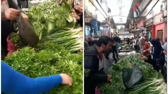 بالفيديو/ في عين الحلوة شرق صيدا...3 بقدونس بألف والخسة بـ 1500 وضمة بصل بـ 500 والاستغلال حرام!