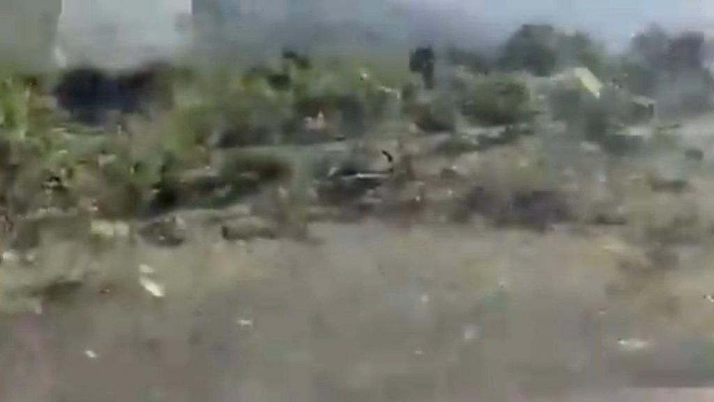 بالفيديو/ أسراب الجراد في دير الأحمر!