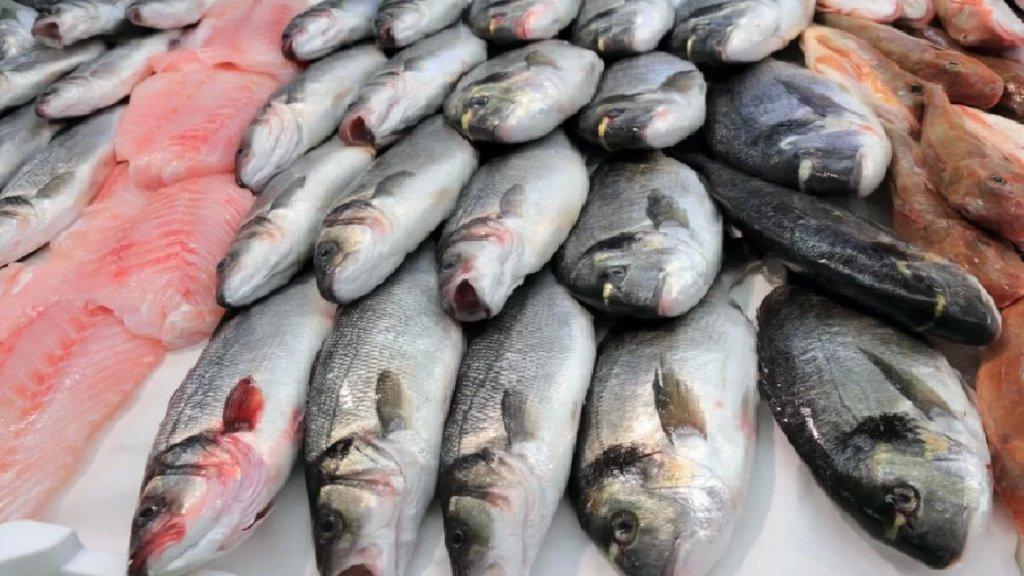 وزارة الصحة تنبه من خطورة استهلاك أسماك غير معروفة المصدر: لعدم التردد في الإبلاغ عن أي عوارض مرضية يشعر المواطنون بها بعد استهلاكهم السمك