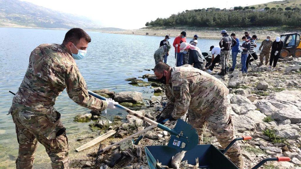 بالصور/ الجيش يشارك في إزالة آلاف الأسماك النافقة في القرعون والتي تكدست على مسافة تبلغ حوالى ٥ كيلومترات