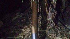 بالصورة / وحدات الجيش عثرت على ثلاثة صواريخ في محيط مخيم الرشيدية في منطقة صور