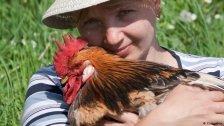 السلطات الصحية الأميركية تحذر: لا تقبّلوا أو تعانقوا الطيور الداجنة!