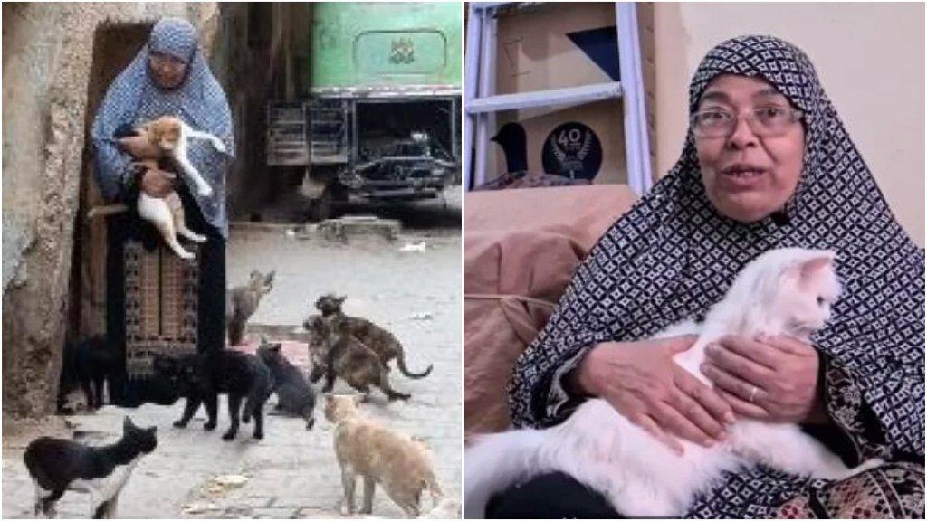 """بالفيديو/ """"أم القطط"""".. سيدة مصرية لم تُرزق بأطفال فوهبت حياتها لخدمة القطط الضالة وإطعامهم """"مش حسيبهم غير لما موت"""""""