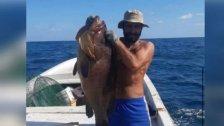 """وصل وزنها لأكثر من 20 كلغ.... اصطياد سمكة """"لقز"""" نادرة من بحر صور!"""