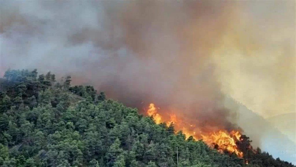 """مصلحة الابحاث العلمية الزراعية تُحذر: """"موجة الحر مستمرة طيلة الأسبوع الحالي مع مؤشر حرائق مرتفع في جميع المناطق"""""""