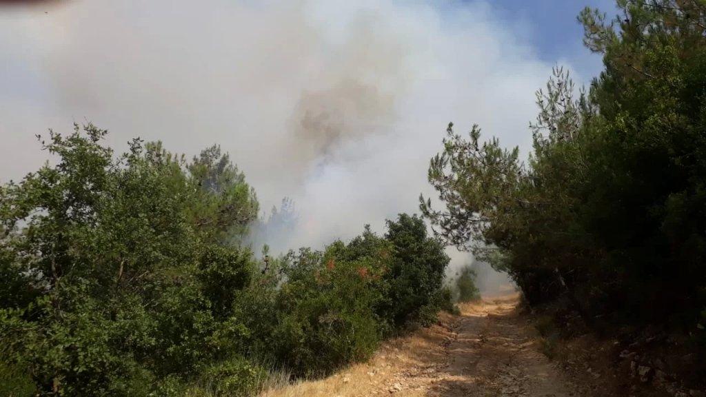 حريق كبير في حبشيت والأهالي يناشدون وزير الزراعة وقائد الجيش التدخل
