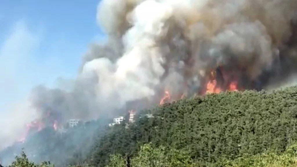 الصليب الأحمر اللبناني: 5 فرق تستجيب لحريق القبيات وتعمل على تقديم الإسعافات الأولية وأيضاً على إخلاء المدنين من منطقة الحريق