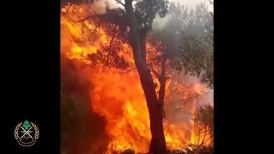 بالفيديو/ تجدد اندلاع الحرائق في منطقتي الرويمة والبستان وتمددها الى محيط المنازل في حرش منطقة القطلبة- القبيات