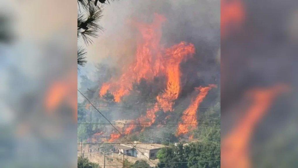 حريق هائل في بلدة عدلون يقترب من المنازل السكنية