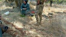 الحاجة وهيبة رفضت الإنسحاب من أرضها في ميس بعدما تعرضت للترهيب من قبل جنود الإحتلال خلال قطفها الزهورات