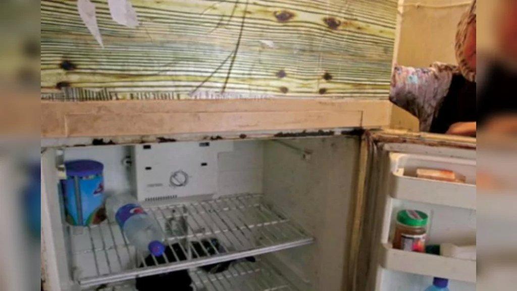 """لا كهرباء للبرّادات ولا غاز للطهي ولا مال للّحم.. طعام اللبنانيين """"كل يوم بيومه""""!"""