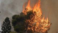 الحرارة إلى ارتفاع.. ومصلحة الأبحاث العلميّة الزراعيّة تحذر من الحرائق: للإبقاء على الجهوزية التامة!