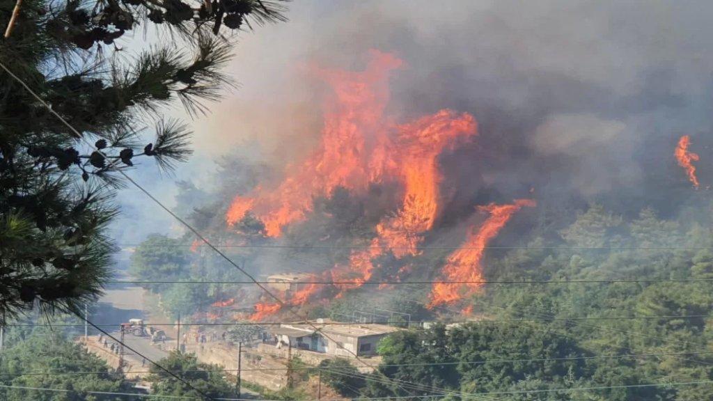 تحذير من خطر اندلاع الحرائق.. تجنبوا أي مصدر للنار قرب الغابات والأراضي الحرجية